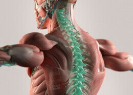 Chiropractic Care Naperville